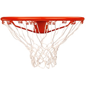 16NS - Basketbalring met Net in Showdoos