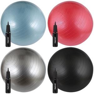 41VV - Fitness/Gymbal met Pomp • Ø 65 cm •